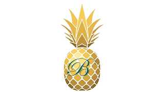 Pineapple Icon w B